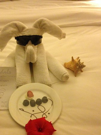 Sandals Royal Plantation: Fun towel critter and yummy chocolate surprise!