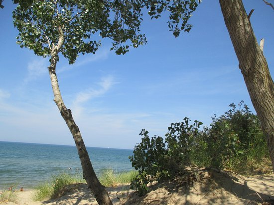 Saugatuck, MI: There is a little shade just before you are actually on the beach