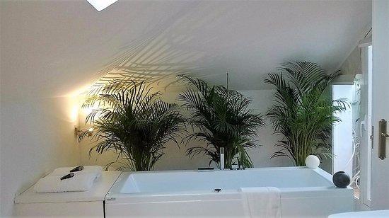 Puerto Banus Suites - Molo 44