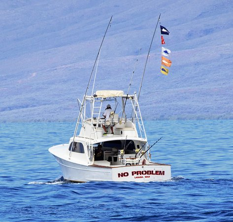 Extreme Sport Fishing Maui : No Problem!