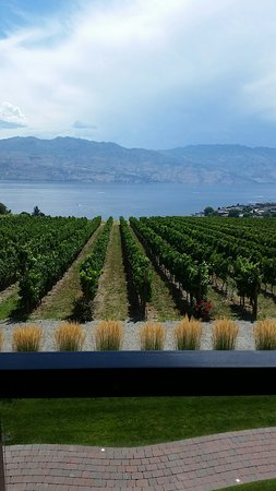 Okanagan Valley, Canada: 20160726_135756_large.jpg