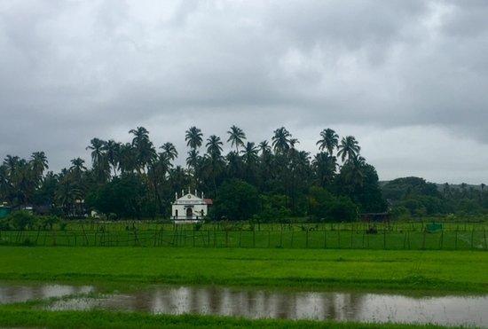 Hacienda De Goa Resort Φωτογραφία