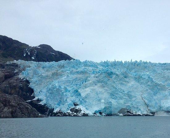 Kenai Fjords Tours: photo0.jpg