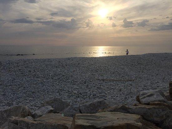 Porto di Boccadarno: photo1.jpg
