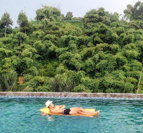 Green Forest Resort: bamboo pool