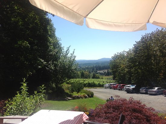 Duncan, كندا: Looking from our picnic table on the patio in the gardens over the valley