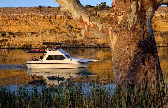 Waikerie, أستراليا: Yarra Cliffs