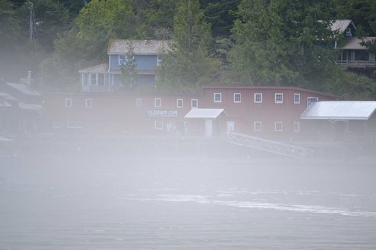 Leaving the fog behind in Telegraph Cove