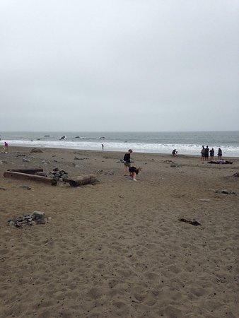 Muir Beach, Kalifornien: photo0.jpg