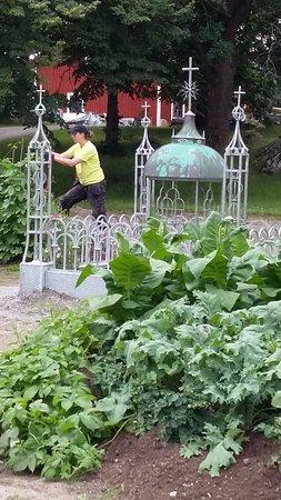Västerås, السويد: Blivande trädgård