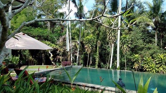 Suara Air Luxury Villa Ubud Photo