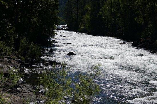 Bigfork, MT: Swan River Nature Trail