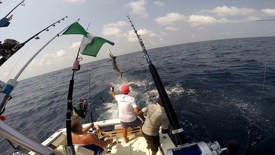 Lagos Fishing Charters