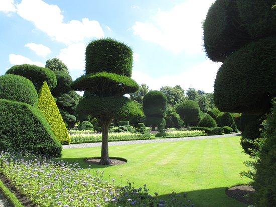 Kendal, UK: Topiary.