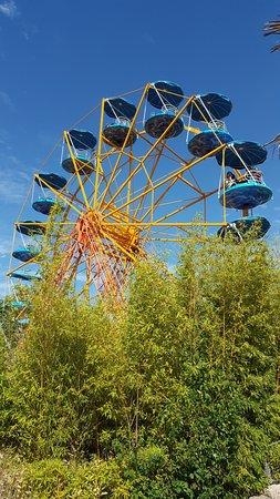 Merlimont, Francia: Grande roue