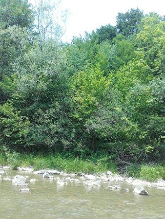Subcarpathian Province, Poland: Fajne miejsce na odpoczynek dużo zieleni spokuj cisza tylko rzeki Las wakacje udane w katach
