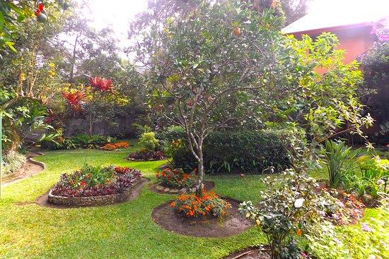 Gambar Boquete Garden Inn