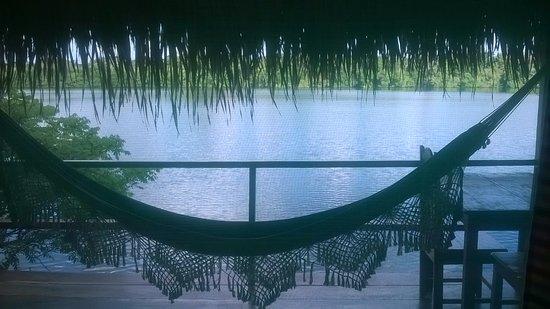 Juma Amazon Lodge: vista dal bungalow
