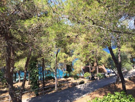Sali, Хорватия: View from the room. Perfect!