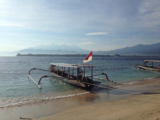 Picture of manta dive gili air gili air tripadvisor - Manta dive gili air resort ...