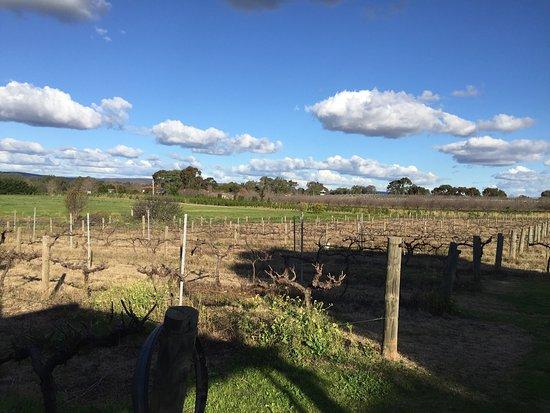 Henley Brook, Австралия: photo0.jpg