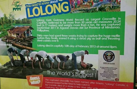 Davao City, Filipina: FB_IMG_1469617669241_large.jpg
