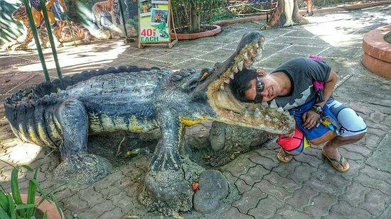 Davao City, Filipina: FB_IMG_1469617548387_large.jpg