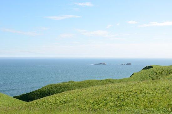 Hamanaka-cho, Japão: 湿原の反対側には太平洋