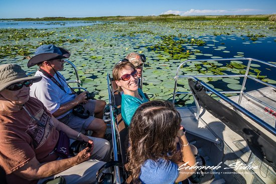 Cocoa, FL: Family fun with Grasshopper Airboat Ecotours.