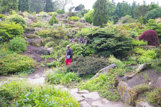 Royal Botanic Garden Edinburgh: Rock Garden