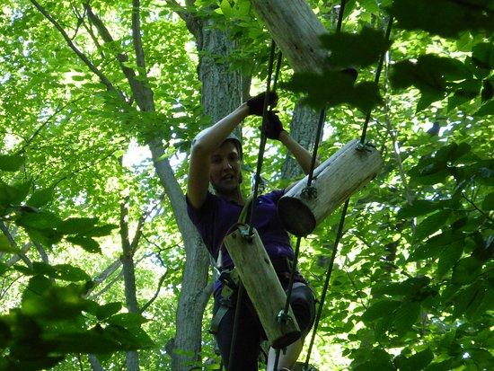 Arbraska Rawdon: dans les arbres !