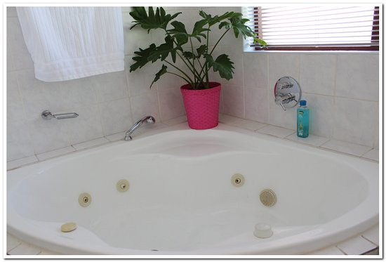 Table View, Güney Afrika: Bathroom 2