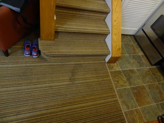Residence Inn Tysons Corner: Understandable for a spill near the kitchen, but our room could have used a good carpet cleaning
