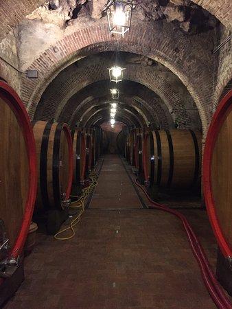 Montepulciano, Italien: Barrels for wine