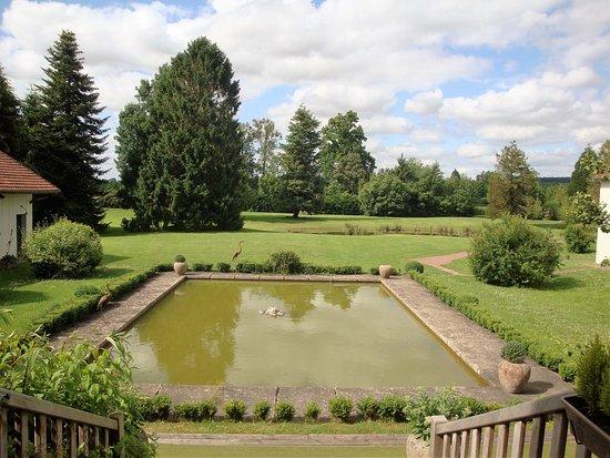 Hotel Golf Parc : vue de la chambre sur le jardin