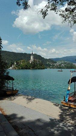 Lesce, Slovenien: IMG_20160726_125029_large.jpg
