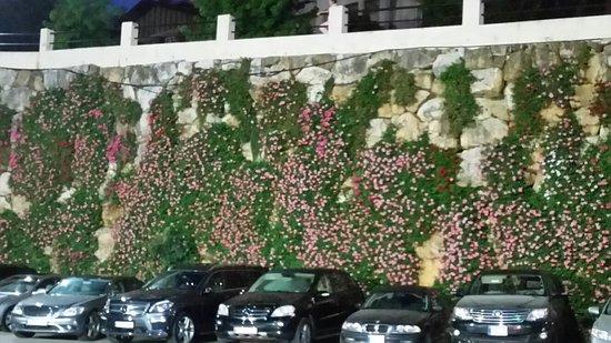 Broummana, Líbano: 20160725_201453_large.jpg