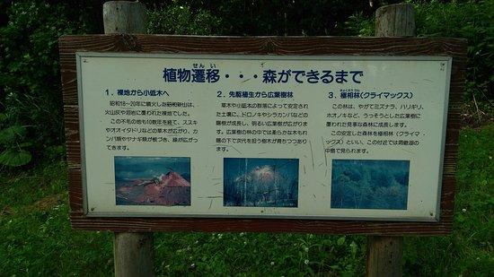 Sobetsu-cho, Japón: 植物遷移の説明版