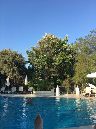 Olea Nova Hotel: Cok basarili 👍🏻