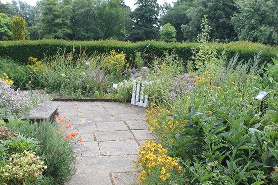 Arlington, UK: Scented Garden