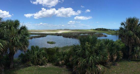 St. Marks National Wildlife Refuge: Salt water marsh vista at Lighthouse