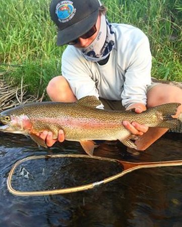 Avon, CO: Vail CO Rainbow Trout
