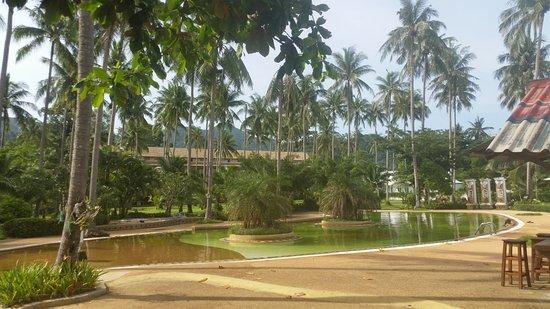 Foto de Chang Park Resort & Spa