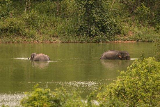 Prachuap Khiri Khan Province, Ταϊλάνδη: ein gemütliches Bad
