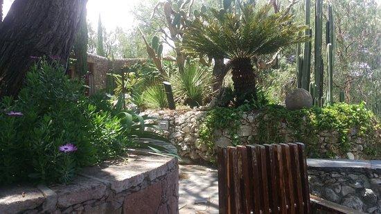 El Santuario, Meksyk: IMAG0155_large.jpg