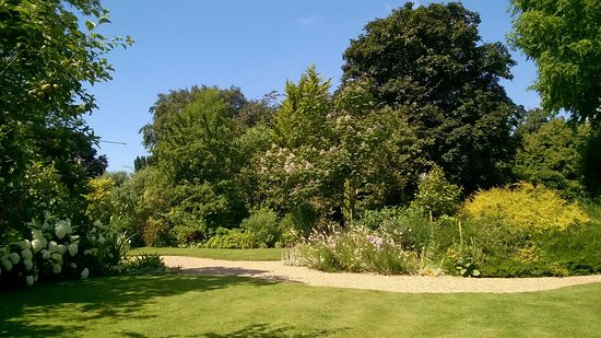Fontwell, UK: View of part of the garden from seat