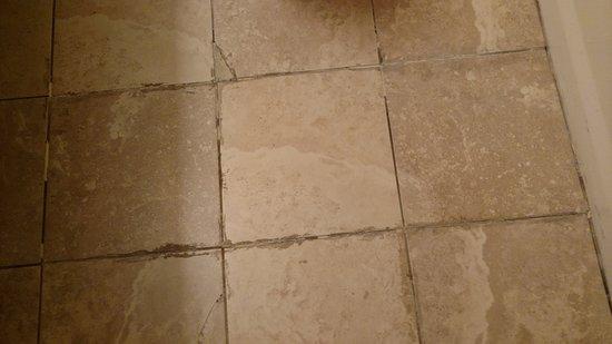 Fountain Hills, AZ: Tile of bathroom floor.