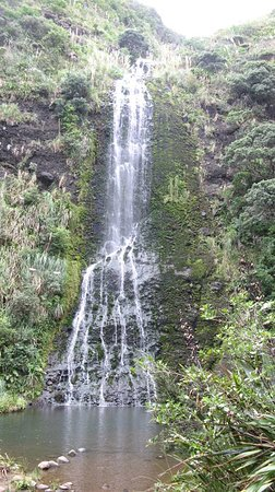 Auckland Wine Trail Tours : Karekare falls