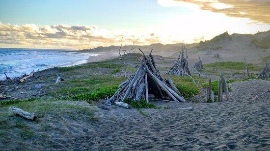 Sigatoka Sand Dunes National Park: Driftwood tepees on the coast