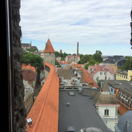 Estonia Tours: photo5.jpg
